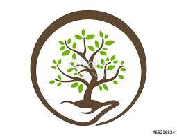 tree symbol hand tree logo nature symbol global life icon stock image and