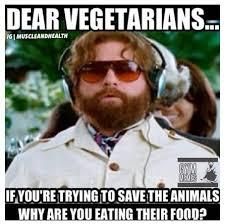 Gym Meme Funny - gym memes murderers gym memes via gym memes http www facebook