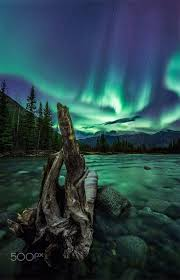 Yukon Lights Festival 80 Best Paintings Northern Lights Images On Pinterest Aurora