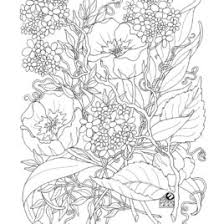 free coloring pages adults popsugar smart living coloring
