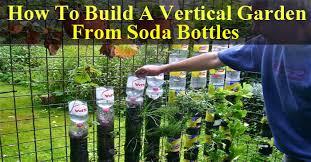 How To Build A Vertical Garden - do not throw your soda bottles make a vertical garden with them