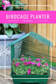 How To Make Planters by How To Make A Birdcage Planter Parakeet Approved House Of