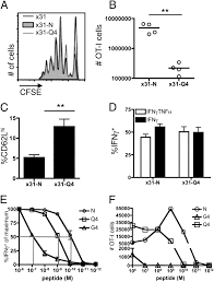 affinity thresholds for naive cd8 ctl activation by peptides and