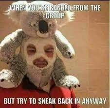 Secret Meme - the best secret memes memedroid