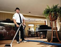 Carpet Cleaning Machines For Rent Types Of Carpet Cleaners To Rent Hudson Rentals