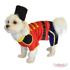 Funny Halloween Costumes Dogs 328 Costumes