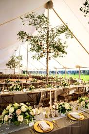 climbing divine ideas about tent wedding receptions reception