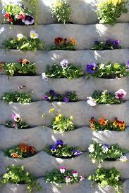 garden club plants living wall vital and well blog