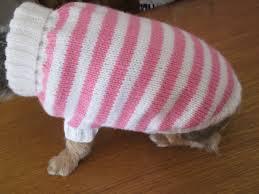 Comment Fabriquer Une Niche Pour Chien Facilement Comment Choisir Un Manteau Pour Son Chien Blog Canin