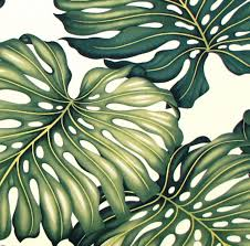 Home Decor Print Fabric Tropical Leaf Upholstery Fabric Large Scale Monstera Furniture