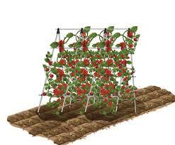 amazon com ecotrellis a frame trellis plant ladder support