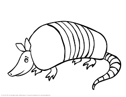 armadillo coloring page 611651 gif mexican golden eagle coloring