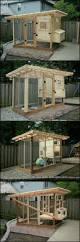 58 best chicken coop images on pinterest chicken coops backyard