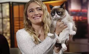 Grumpy Cat Has Died Youtube - grumpy cat s owner wins huge lawsuit over the rights to grumpy cat