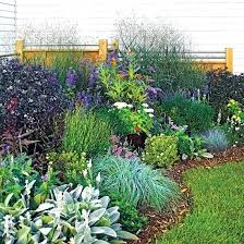 flower garden ideas before and after garden makeovers perennial