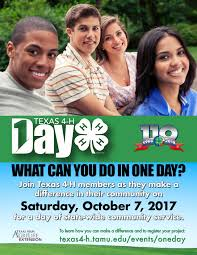 one day 4 h texas 4 h