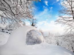 igloo garden igloos transform your backyard business insider