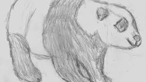 easy animal sketches how to sketch animals learn pencil drawing