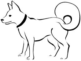 eskimo dog sketch animals dogs e eskimo dog sketch png html