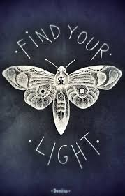 white moth black paper find your light skull moth
