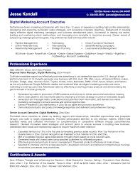 Senior Marketing Manager Resume Sample by Digital Marketing Resume Example Essaymafia Com