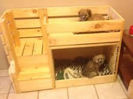 Doggie Bunk Beds Pyramid Beds Diy Pet Bunk Bed Plans To Build Bed Pallet