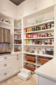 Kitchen Pantry Designs Pictures Emejing Kitchen Pantry Cabinet Design Ideas Images House Design