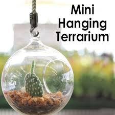 mini glass blown terrarium