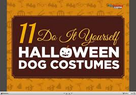11 creative diy dog costumes you can make in time for halloween
