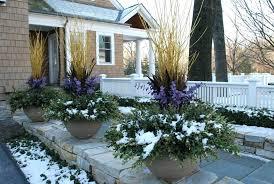 Winter Gardening Ideas Backyard Winter Gardening Backyard Vegetable Garden Design Ideas
