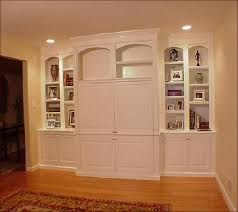 built in cabinets for kitchen home design ideas