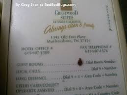 National Bed Bug Registry Check Your Apartment Complex For Bed Bug Complaints Pg4