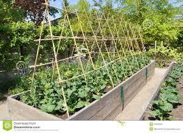 small home vegetable garden design diy kitchen cabinets kitchen garden stock image image 24903961