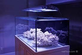 t5 aquarium light fixture giesemann spectra metal halide t5 light fixture reef tank