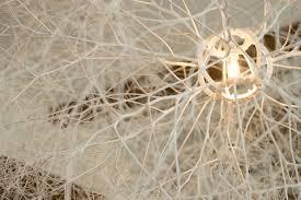 tumbleweed tumbleweed u2014 owen mortensen art u0026 design