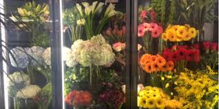 florist nyc gorgeous s day flowers from manhattan s best florist