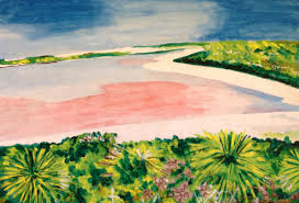 Pink Lake Pink Lake Perth Arts Access Victoria Art For Every Body