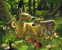 deer family 3d and cg abstract background wallpapers on