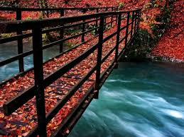 imagenes de otoño para fondo de escritorio imagenes y fondos de otoño universo guia