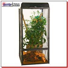 lizard cages reptile supplies ebay