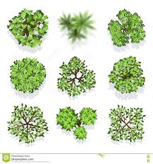 trees top view vector set for landscape design and map stock