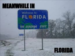 Florida Winter Meme - meanwhile in funny meme pictures meanwhile in