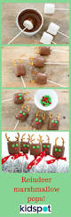 easy kids christmas cookies christmas lights decoration