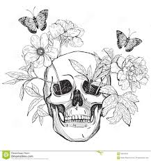 skull flowers and butterfly stock vector illustration of danger