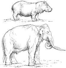 men stone age henry fairfield osborn u2014a project