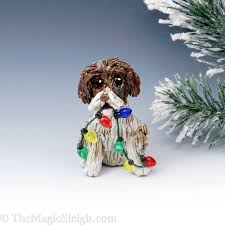 41 best german wirehaired pointer images on german