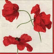 amazon com entertaining with caspari dancing poppies paper