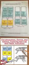 color my own karyotype this activity is great for explaining