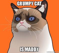 Create A Grumpy Cat Meme - grumpy cat is maddy cartoon grumpy cat make a meme