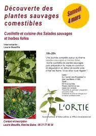 cuisiner les herbes sauvages activités et programme association d éducation à l environnement